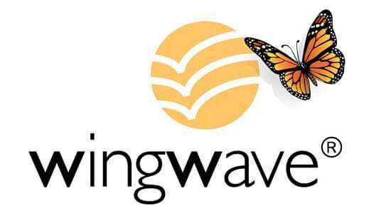 logo Wingwave descargado